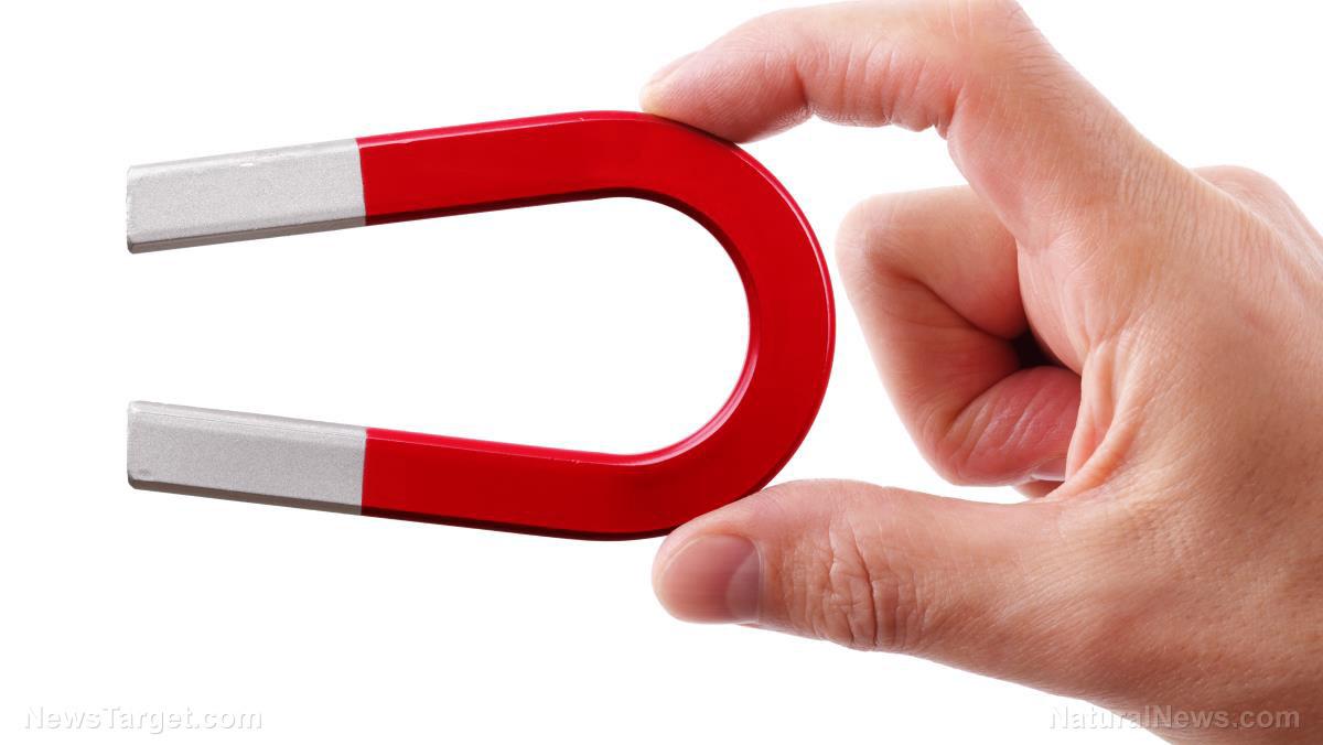 Magnetic Rings For Fingers